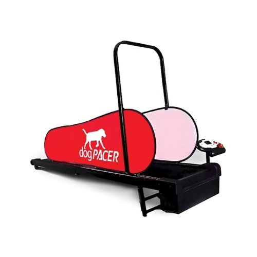 What Is The Best Dog Treadmill For Your Little Fur Baby To Run On? 1