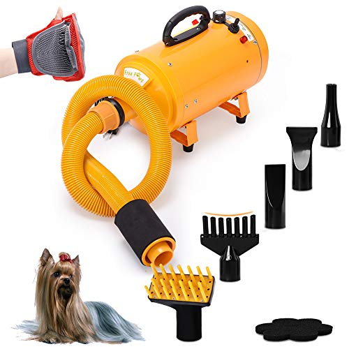Which Dog Dryer Will Blow You Away With Value? 4