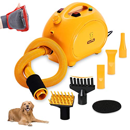 Which Dog Dryer Will Blow You Away With Value? 5
