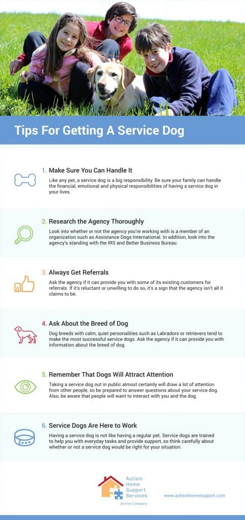 Tips For Getting A Service Dog