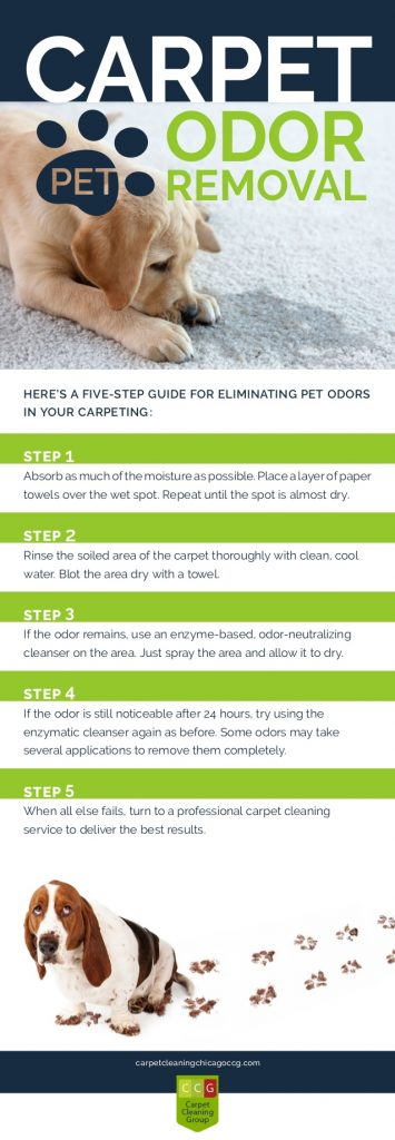 pet-odor-removal-checklist